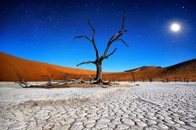Desert sel
